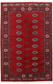 Tappeto Pakistan Bukara 2ply RXZN346