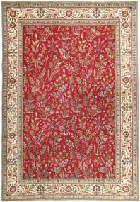 Tabriz Patina carpet AXVZZZO138