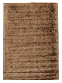 Brooklyn - Brown Rug 250X350 Modern Brown/Light Brown Large ( India)