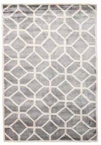 Palace Rug 170X240 Authentic  Modern Handknotted Light Grey/Beige ( India)