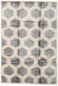 Lounge Rug 200X300 Authentic  Modern Handknotted Light Grey/Beige ( India)