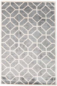 Palace Rug 200X300 Authentic  Modern Handknotted Light Grey/Dark Grey ( India)