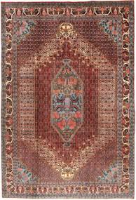 Senneh tapijt AXVZZZZQ2428