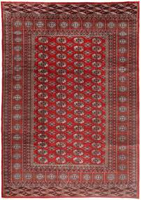 Turkaman carpet AXVZZZZQ1949