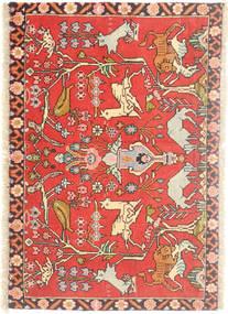 Hamadán szőnyeg AXVZZZZQ861