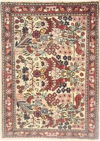 Jozan tapijt AXVZZZZQ715