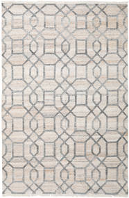 Tracy Rug 200X300 Authentic  Modern Handwoven Light Grey ( India)
