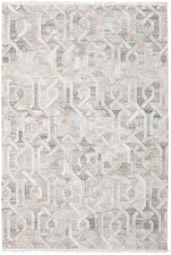 Trinny - Brown/Nature Rug 200X300 Authentic  Modern Handwoven Light Grey/White/Creme/Beige ( India)