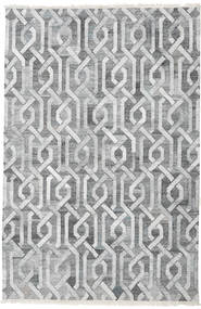 Trinny - Dark Grey/Grey Rug 200X300 Authentic  Modern Handwoven Light Grey/Dark Grey ( India)