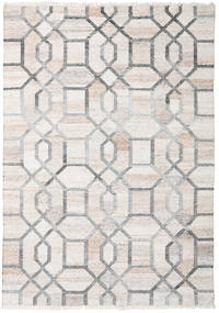 Tracy Rug 170X240 Authentic  Modern Handwoven Light Grey/White/Creme ( India)
