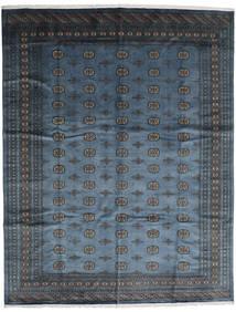 Pakistan Bokhara 2ply tapijt RXZQ10