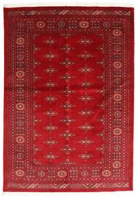 Pakistan Bokhara 3ply tapijt RXZQ66