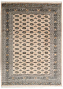 Pakistan Buchara 2ply Teppich RXZQ119