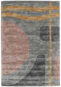 Urban Lake - 2018 Rug 200X300 Modern Light Grey/Brown ( India)