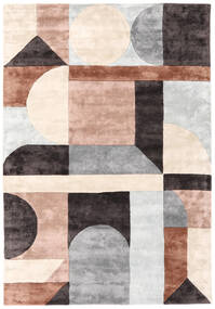 Dovetail - 2018 Rug 200X300 Modern Light Grey/Dark Brown ( India)