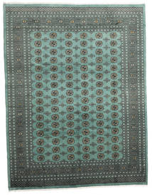 Pakistan Bokhara 2ply carpet RXZR160