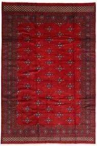 パキスタン ブハラ 2ply 絨毯 ABCZC404