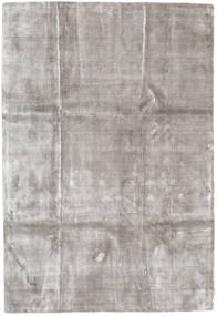 Broadway - Secondary Rug 200X300 Modern Light Grey ( India)