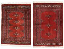 Pakistan Bokhara 2ply carpet RXZU124