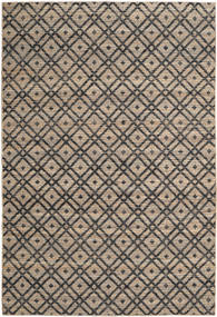 Trisha Rug 200X300 Authentic  Modern Handwoven Light Brown/Dark Grey ( India)