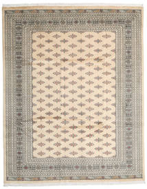 Pakistan Bokhara 3Ply Rug 242X304 Authentic Oriental Handknotted Light Brown/Beige (Wool, Pakistan)