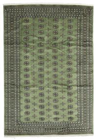 Pakistan Bokhara 2Ply Matto 243X356 Itämainen Käsinsolmittu Oliivinvihreä/Tummanharmaa/Tummanvihreä (Villa, Pakistan)