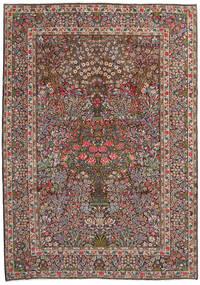Sarough Vloerkleed 244X344 Echt Oosters Handgeknoopt Lichtbruin/Donkerbruin (Wol, Perzië/Iran)