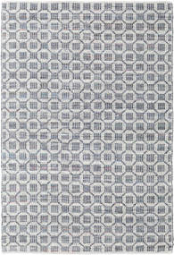 Elna - Grey Rug 170X240 Authentic  Modern Handwoven Light Grey/Light Blue (Cotton, India)