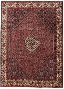 Bidjar Zanjan Matta 250X345 Äkta Orientalisk Handknuten Mörkröd/Mörkbrun Stor (Ull, Persien/Iran)