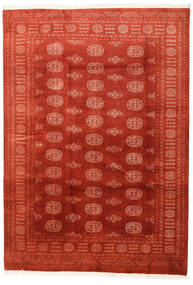 Pakistan Bokhara 3Ply Rug 170X241 Authentic  Oriental Handknotted Rust Red/Orange (Wool, Pakistan)