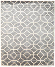 Palace Rug 250X300 Authentic  Modern Handknotted Light Grey/Beige Large ( India)