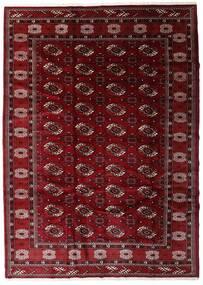 Turkaman Rug 204X285 Authentic Oriental Handknotted Dark Red/Dark Brown (Wool, Persia/Iran)