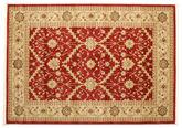 Ziegler Kajab - Rood tapijt RVD4064
