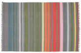 Rainbow Stripe - Grey rug CVD5802