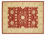 Farahan Ziegler - Red rug RVD9692