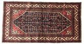 Hamadan carpet EXZR771