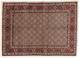 Moud carpet VEXZU187