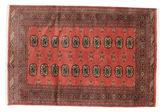 Pakistan Buchara 2ply Teppich RZZAF492