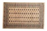 Pakistan Bokhara 3ply carpet RZZAC202