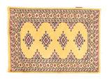 Pakistan Bokhara 2ply carpet NAS463