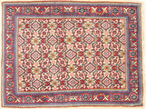 Sarouk carpet XVZZC6