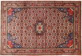 Koliai carpet XVZZE249