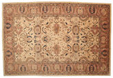 Ziegler carpet ABCP592