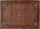 Koliai carpet RXZC66