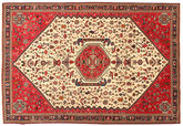 Abadeh Sherkat Farsh carpet NAZA2