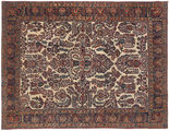 Sarouk American carpet NAZA1147