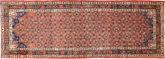 Koliai carpet AXVA986