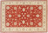 Ziegler carpet NAZD648