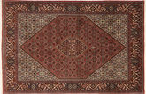 Bidjar carpet XEA2546