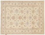Ziegler carpet NAZD761